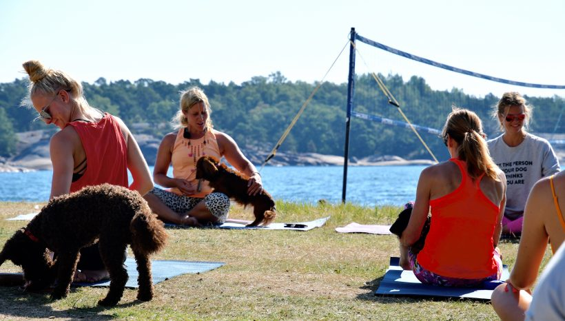 Dooga eli Yoga for Dogs tunnit Hangossa